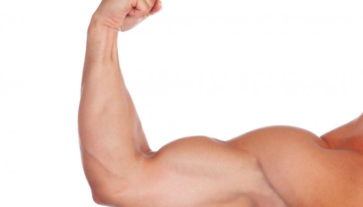 肌肉比例高 患癌風險低?